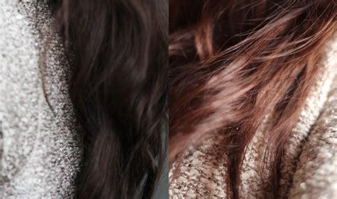 cet hiver sera marron glac 233 d 233 licat beaut 233