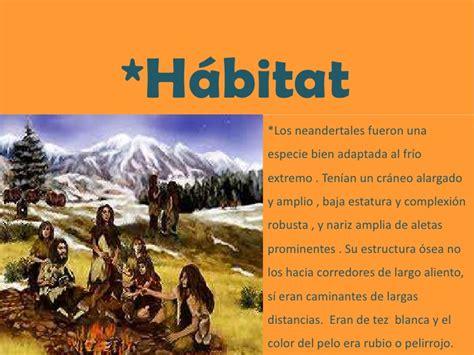 habitat si鑒e social neanderthalensis