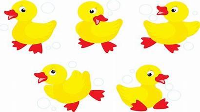 Ducks Duck Five Clipart Went Ducklings Play