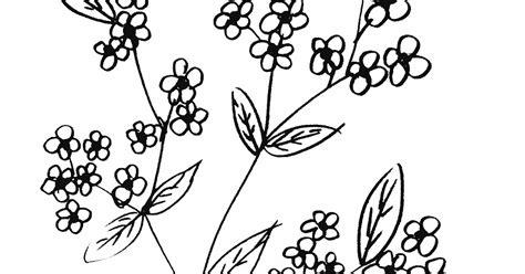 bunga mungil mudah sederhana