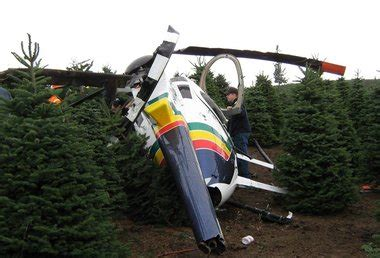 man injured  helicopter hauling christmas trees
