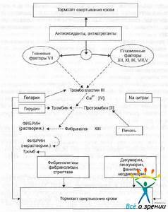 Мочегонные препараты для лечения гипертонической болезни