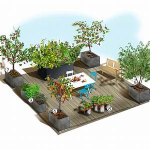 terrasse gourmande terrasse balcon et compagnie With decoration d un petit jardin 15 boule de neige plante en ligne