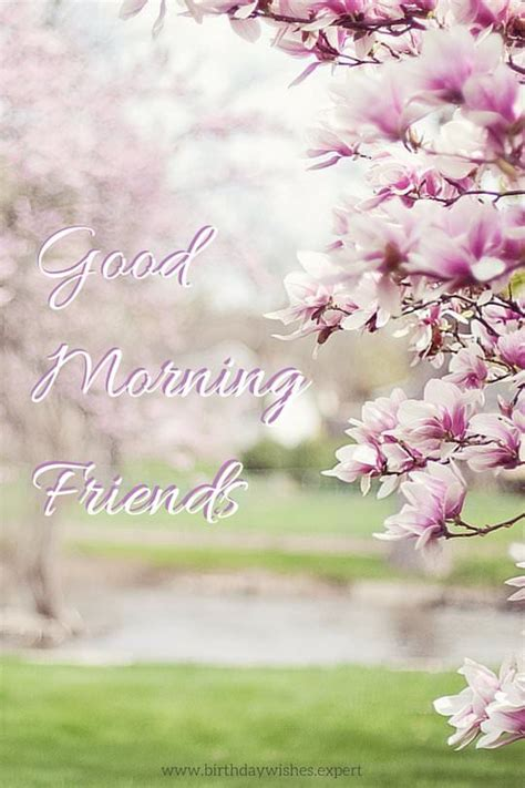 good morning images    beautiful flowers
