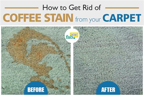 How To Remove Vomit Stains From Carpet (top 3 Methods) Red Carpet Event Backgrounds How Much Do New Carpets Cost Uk Ready Nail Polish Review Veterans Cleaning Sherwin Williams Average Of Installation On Stairs To Clean From Shaw