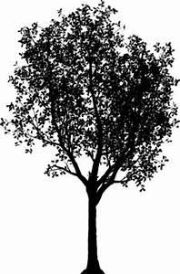 Baum Fällen Kosten Forum : baum sommer scherenschnitt staffageobjekte archinoah ~ Jslefanu.com Haus und Dekorationen