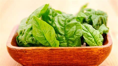 cuisiner des epinards épinard valeur nutritive bienfaits santé et conservation
