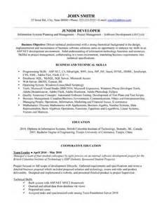 sle resume for junior php developer junior net programmer resume sql resumes resume cv cover letter sle programmer resume