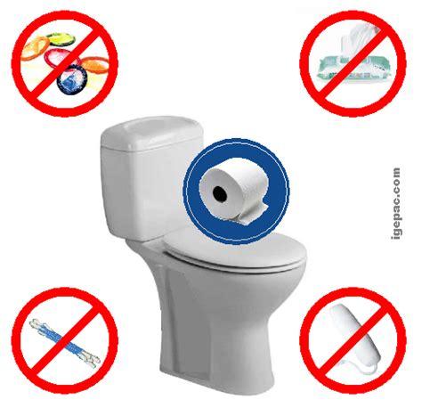 peut on jeter un ton dans les toilettes d 233 gorgement wc bouch 233 et toilette engorg 233 e 224 bruxelles