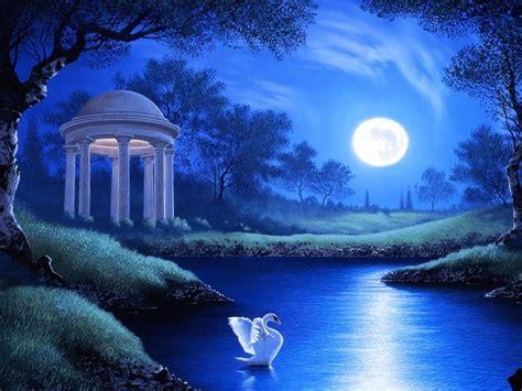 swan lake night full moon trees grass hd wallpaper