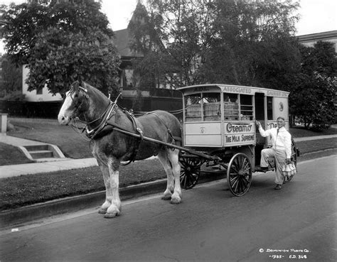 Associated Dairies Truck [delivery Man With Horse And