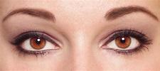 Two eyes stock image. Image of beautiful, macro, eyelash ...