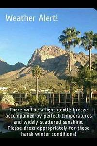 106 Best Meanwhile in Arizona... images | Meanwhile in ...