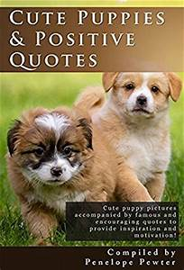 Cute Puppies and Positive Quotes: Cute Puppy Photos and ...