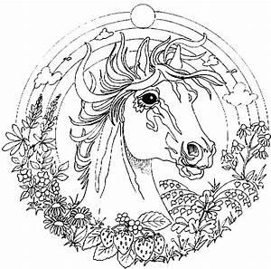 Coloriage Cheval Licorne Page 4