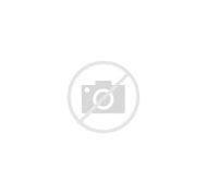 Assassin's Creed Black Flag Edward Kenway