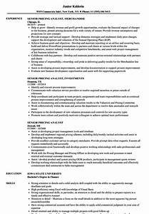senior pricing analyst resume samples velvet jobs With resume prices