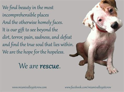 Dog Rescue Quotes and Poems