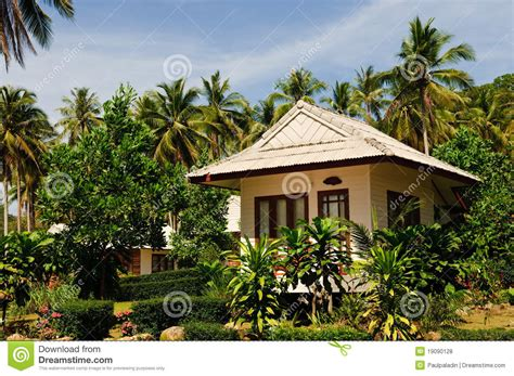 tropical bungalow royalty  stock  image