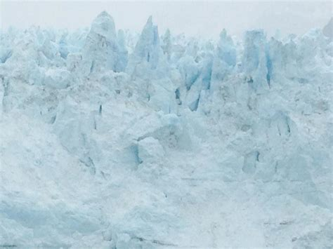 inspiring majestic bay photo the majestic glacier bay national park cosmopolitan nomad