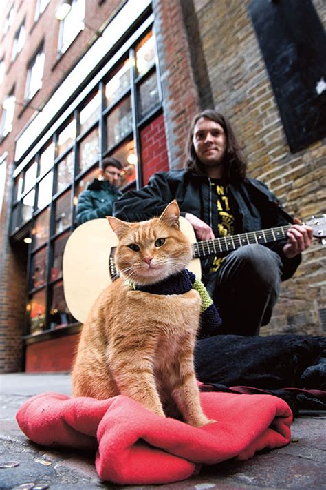 James Bowen And Street Cat Bob How They Became Global