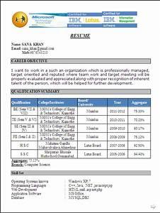 Resume Template Computer Science Resume Blog Co Excellent Resume Template Of A Computer