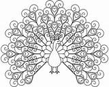 Coloring Peacock Pages Printable Adult Mandala Acoloring Adults sketch template