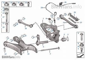 Rear Axle Support  Wheel Suspension