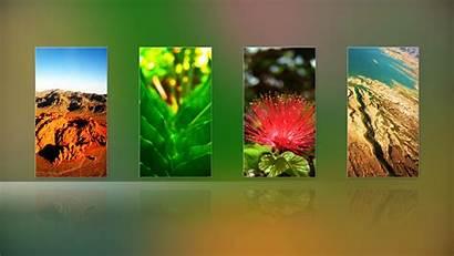 Collage 1080 Desktop Nature Create Wallpoper Background