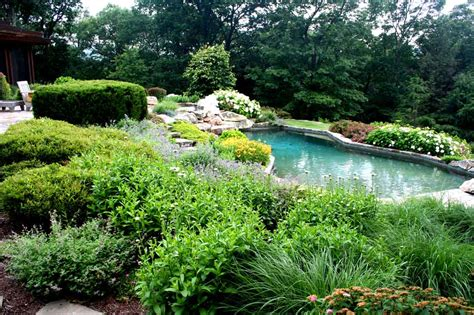 best plants for around the pool plants around the pool st george pool landscaping desertscapes