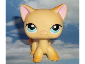 lps cat littlest pet shop orange haired cat 339