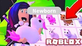 pets  adopt  roblox game strucidcodescom