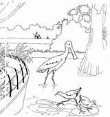 Zoo Coloring Fun Votes sketch template