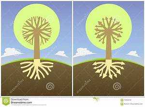 Set Two Abstract Tree Diagram With The Branches Of The