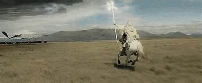 Gandalf Shadowfax Lord Rings Horse Horses Couple