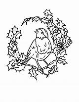 Robin Coloring Bird Arrangements Floral Drawing Colouring Robins Draw Getdrawings sketch template