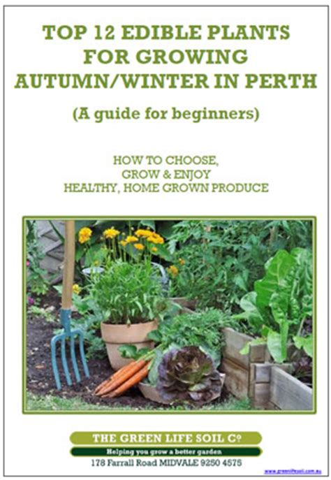 top  edible plants  growing  autumnwinter  perth