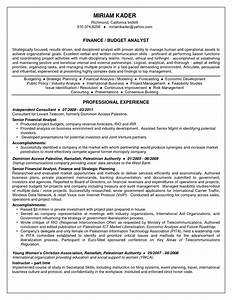 Management analyst resume federal government