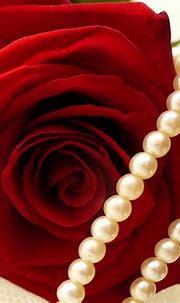 pic new posts: Wallpaper Pearl