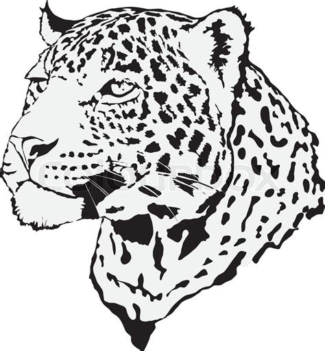 9 Unique Photograph Of Cheetah Outline Printable Best Stock Illustration Leopard Made In Eps Stock Vector