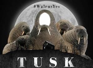 Image Gallery mr tusk