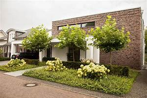 Kleine Bäume Für Garten : b ume f r kleine g rten ausw hlen einpflanzen und pflegen haas blog ~ A.2002-acura-tl-radio.info Haus und Dekorationen