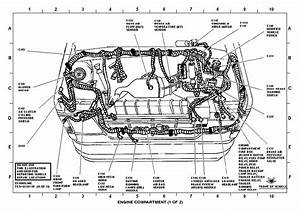 2007 Dodge Charger 3 5l Engine Diagram  Dodge  Auto Wiring