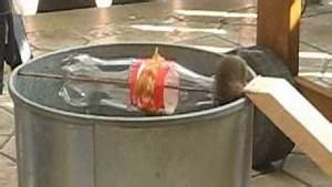 Mäuse Fangen Ohne Falle : grosse lebendfalle rattenfalle mausefalle fuer mehr als 7 nager gleichzeitig maf01 vea mas ~ Markanthonyermac.com Haus und Dekorationen