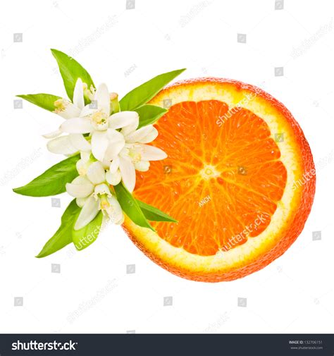 Citrus Fruit Orange Cut Off From The Side Decorated