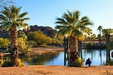 14 Top-Rated Tourist Attractions in Phoenix | PlanetWare
