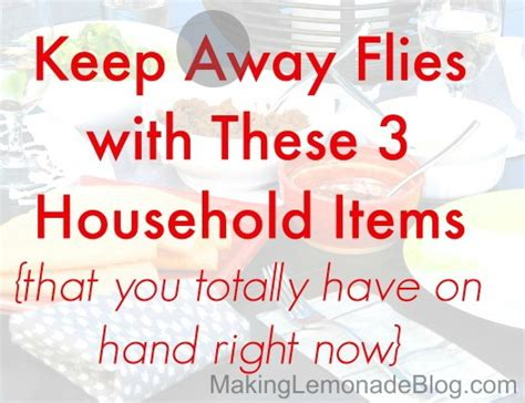 what is to keep flies away hometalk how to keep flies away with 3 home items
