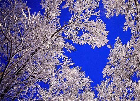 Beautiful Winter Wallpaper Hd by Beautiful Winter Background Wallpaper Free Hd Wallpapers