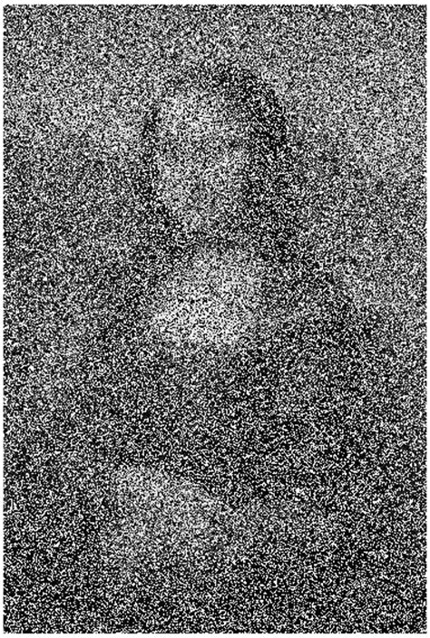 Salt and Pepper Image Denoising Using MATLAB   Wirebiters