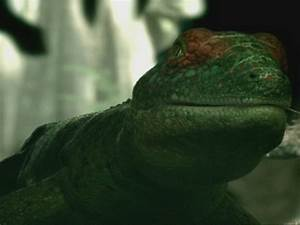 Image - WWM1x2 Petrolacosaurus.jpg - Walking With Wikis ...